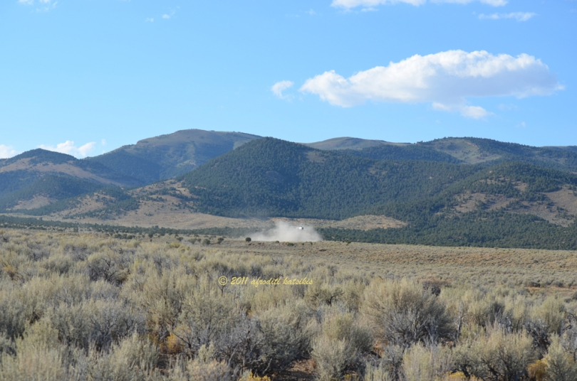 The second band has crossed the road we drove in on; this is south of the trap site area.