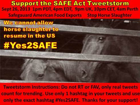 Tweetstorm to Suport the SAFE Act of 2013
