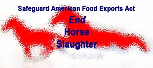 2015 HorseSlaughter fb